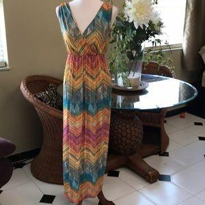 🌿Mlle Gabrielle Gorgeous Maxi Dress EUC